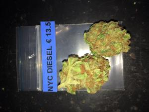 Willie Wortel's Indica Coffeeshop weed NYD