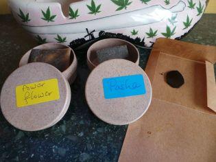 WW INDICA COFFEESHOP PASHA FLOWER POWER July 11 2018