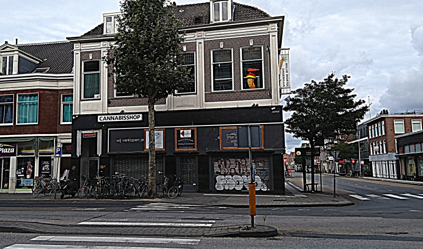 sensemilla haarlem september 2019
