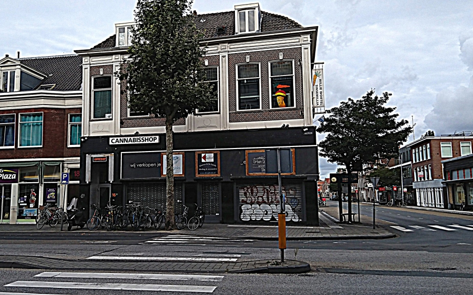 Haarlem Alkmaar Zandvoort BestCoffeeshops