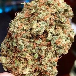 Neville's Haze #Weed #WeedPorn #W420 #Indica #FireKush #SFV #Perfection #Packed #Loud #Trichomes #Dank #FlavorBomb #OnlyTheFinest #TopShelf #CupWinner 