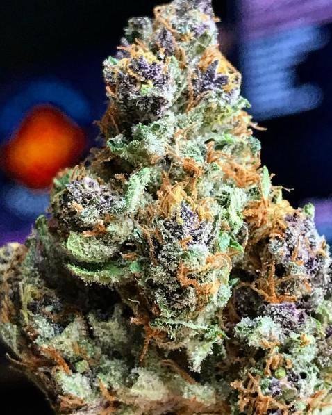 #PurpleLAKush 🍇🍇🍇 dropping soon