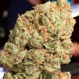 Raskal OG #Weed #WeedPorn #W420 #Indica #FireKush #SFV #Perfection #Packed #Loud #Trichomes #Dank #FlavorBomb #OnlyTheFinest #TopShelf #CupWinner 