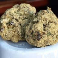 FIRST MOONROCKS IN AMSTERDAM