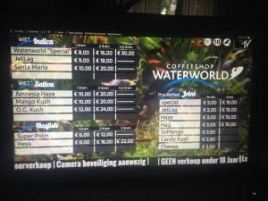 Water world Den Hague 2015 november