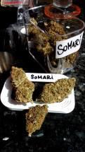 Bagheera Coffeeshop weed 3