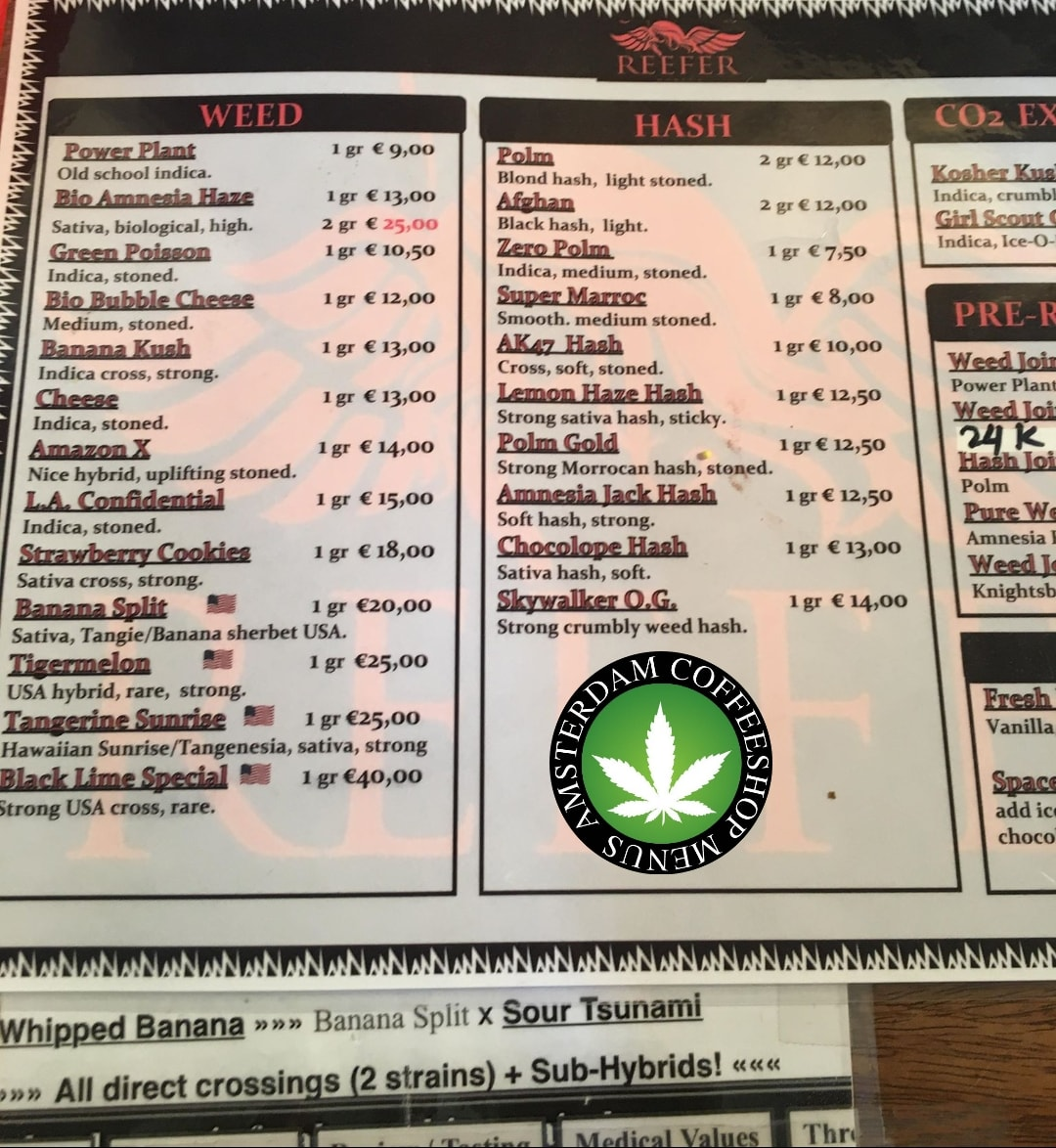 Coffeeshop Reefer 2018 March Smoker City Trip