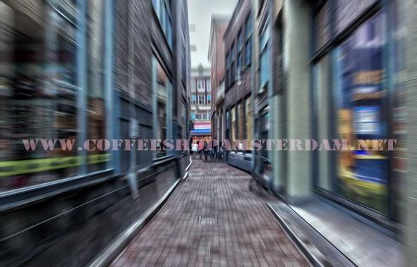 coffeeshopamsterdam.net