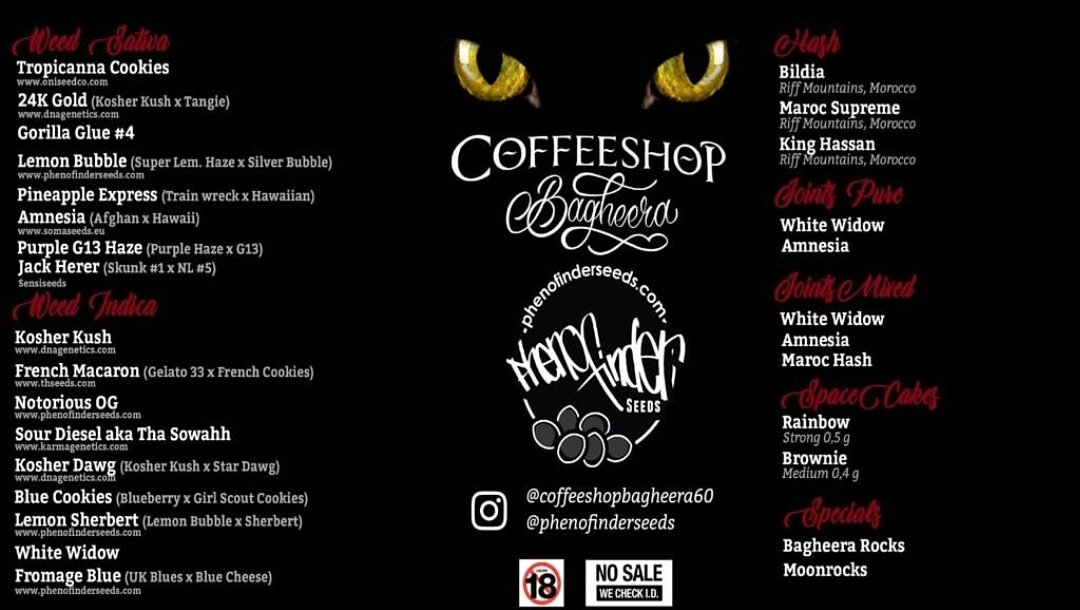 coffeeshop bagheera 2019 december